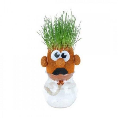 Травянчик игрушка Забавная мордочка оранжевый ORB Sprouti Palz